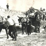 Romerías años 50