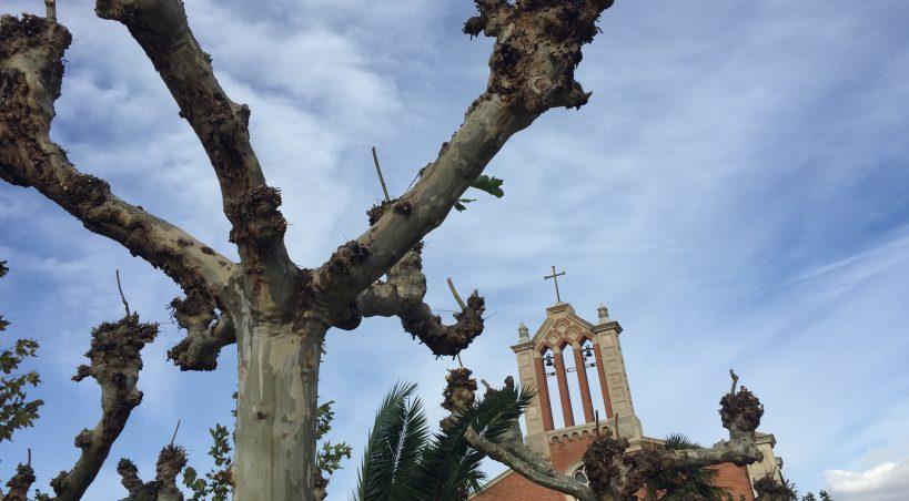 El Ayuntamiento contratará tres jardineros de forma temporal